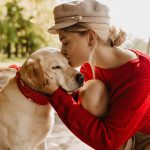 Why you should choose an anti-bark collar to stop your dog from barking